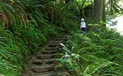 hiking-mapleton-florence-maple-lane-rv-park-marina-mapleton-oregon