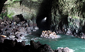 sea-lion-caves-florence-maple-lane-rv-park-marina-mapleton-oregon