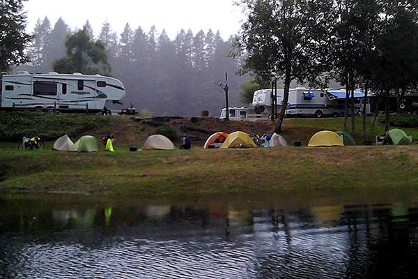 Home Maple Lane Rv Park Amp Marina Mapleton Oregon